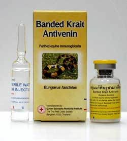 Banded Krait Antivenin on Buy-Snake-Wine.com