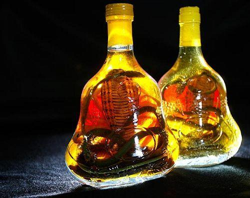 VIETNAMESE SNAKE WINE BIGGEST BOTTLES OFFER